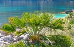 Le 7 spiagge della Riserva naturale dello Zingaro