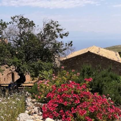 Alla scoperta di Borgo Cusenza nel cuore della  Riserva dello Zingaro